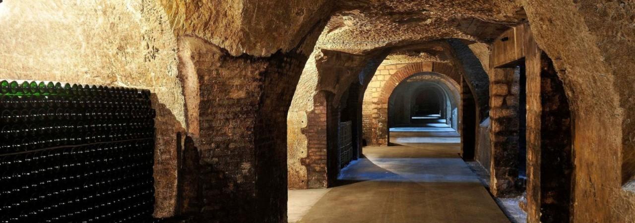 Hôtel restaurant Fagnières - Visite de Caves à Vin